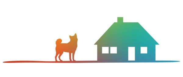 Ein Hund steht vor dem Hundehotel
